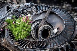 Фрагмент двигателя Boeing 777 рейсом MH17, сбитого на Украине