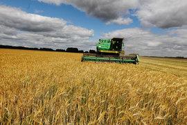 Сельхозпроизводители, продавшие зерно в государственный интервенционный фонд, столкнулись с проблемой невозможности его обратного выкупа
