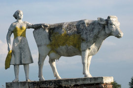 Памятник корове на въезде в Калужскую область