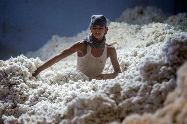 Хлопкоочистительная фабрика в Индии