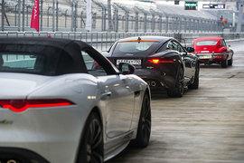 Купе и кабриолет Jaguar F-Type на «Сочи автодроме»