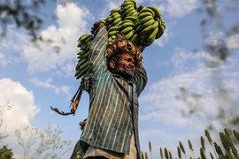 Экономики и многих развивающихся, и развитых стран сегодня характеризуются низкими темпами роста производительности труда