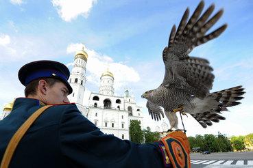 Орнитологическая служба Московского Кремля