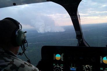 В зоне отчуждения и отселения на территории Чернобыльской пущи возник пожар