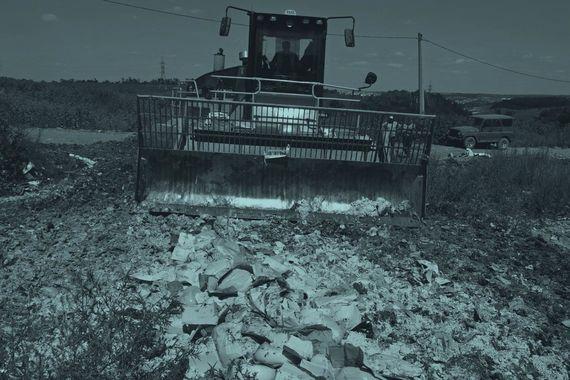 Чем питаются чиновники, решившие уничтожать еду Default-1tzz