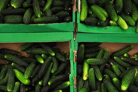 Сети не смогут устанавливать на 26 видов продуктов свою наценку выше 20%
