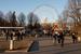 В 2014 г. ВДНХ объединили с Ботаническим садом и парком «Останкино», теперь площадь комплекса превышает 520 га