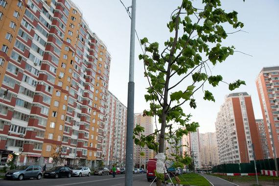Несмотря на увеличение ввода жилья, квартир эконом-класса сдается меньше