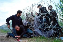 Европа тонет в потоках беженцев
