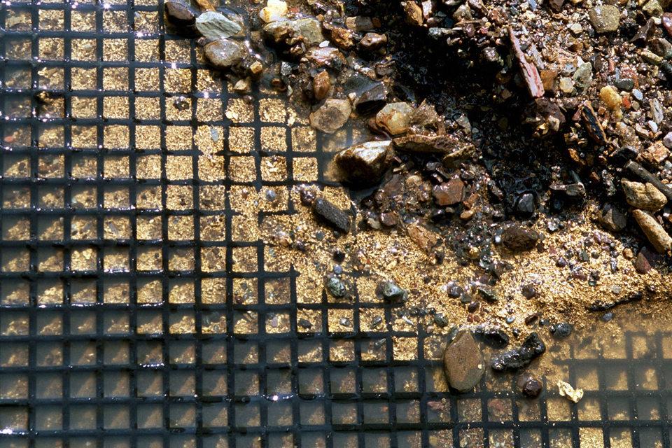 Добывать рассыпное золото на территории Магаданской области смогут частные лица, им будет предоставляться земля в 0,15 кв. км каждому на пять лет
