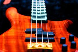 Музыканты могут изъять свои произведения из каталога РАО