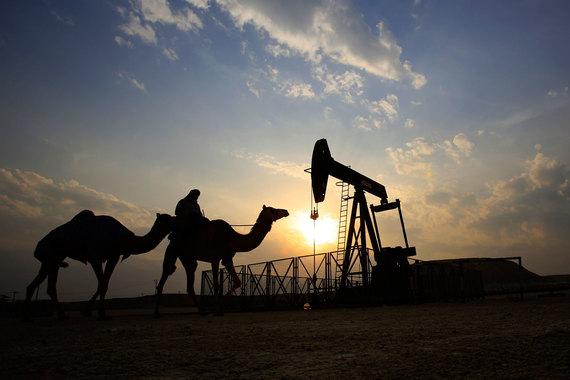Мировой спрос на нефть, по прогнозу ОПЕК, вырастет к 2040 г. на 18 млн барр./сутки по сравнению с 2014 г. и достигнет 109,8 млн барр./сутки
