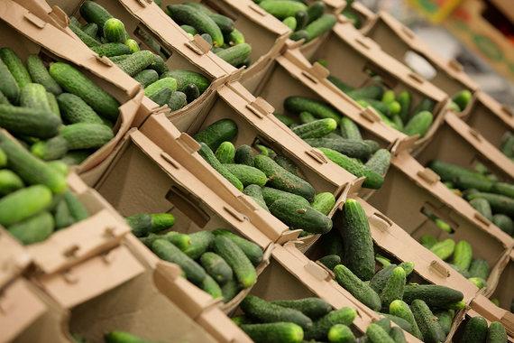 Помимо того что нуждающиеся получат помощь, программа поддержит спрос на российские продукты питания, торговлю и сельское хозяйство, планирует Минпромторг