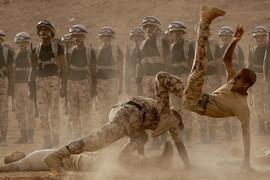 Саудовская Аравия может отправить наземные войска в Сирию