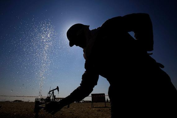 Страны ОПЕК не смогли договориться не увеличивать добычу нефти в будущем