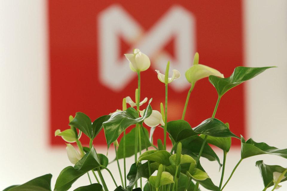 Московская биржа запускает летом торговлю поставочными фьючерсами
