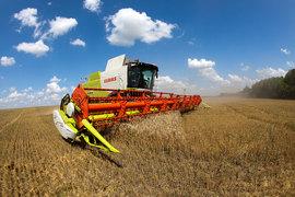 Минсельхоз верит в высокий урожай несмотря на дожди в южных регионах