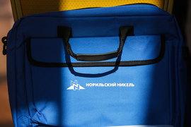 «Норникель» продал 13,3% Быстринского проекта