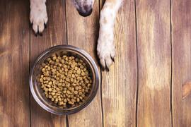 «Мираторг»  будет кормить собак и кошек