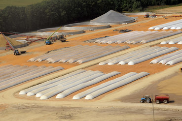 Некогда один из крупнейших в стране агрохолдингов – «Разгуляй» теперь банкротится