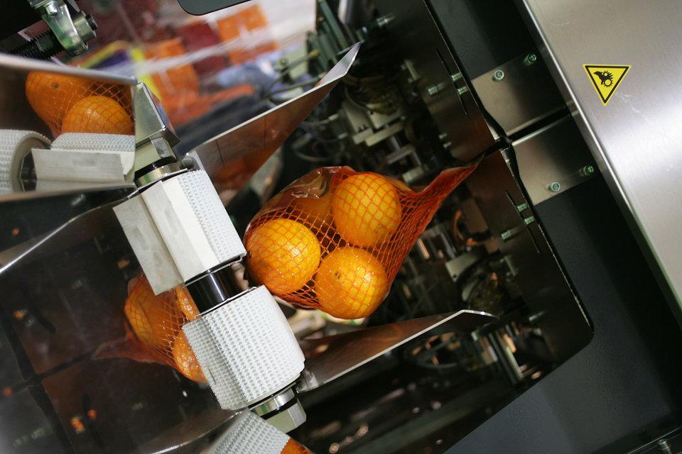 Россия запретила поставки овощей ифруктов изЕгипта