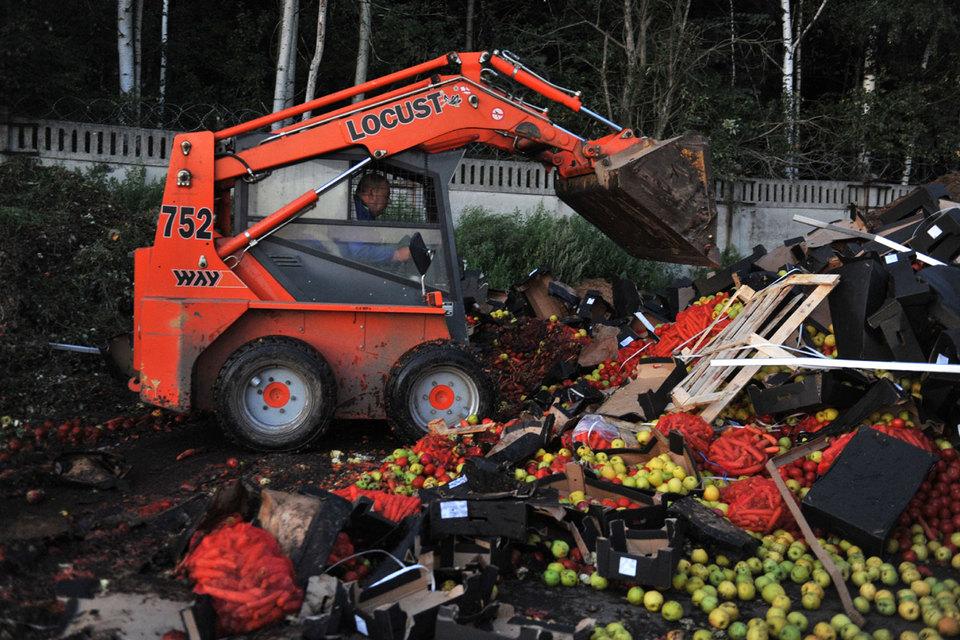 Партия «Яблоко» подала вВерховный суд иск оботмене продуктового эмбарго