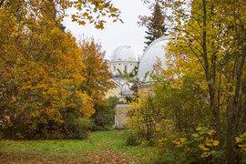 Посетители фестиваля «Пулковский меридиан» под Петербургом прикоснулись к высокой науке и земной музыке среди рефракторов и пассажных инструментов