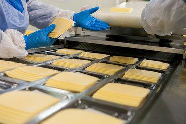 Девелопер «Первый базис» собирается построить в Ленобласти производство сыров стоимостью 350 млн руб.