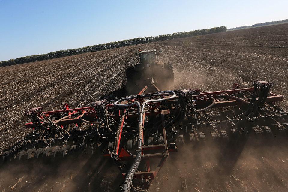 «Росагро» распродает свыше 100 000 гектаров земли