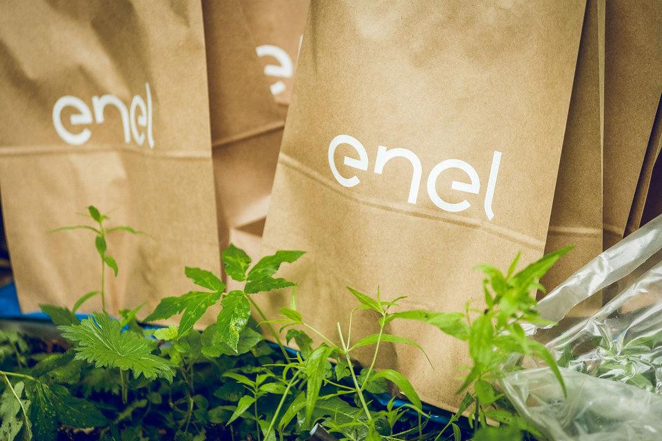 В понедельник Enel Group сообщила, что согласно обновленной стратегии направит по результатам 2016 г. на дивиденды 55% чистой прибыли, 2017 г. – 65%