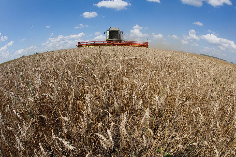 Продажи зерноуборочных комбайнов и тракторов в России будут расти минимум до 2020 г., прогнозирует Минсельхоз. Но без господдержки рынок может сократиться