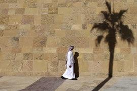 Для избавления от нефтяной зависимости Саудовской Аравии нужна более дорогая нефть