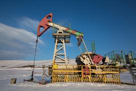 О снижении добычи с нефтяными компаниями говорил президент России Владимир Путин