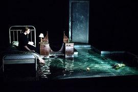 Офелии не нужно бросаться в реку, вода у нее в комнате