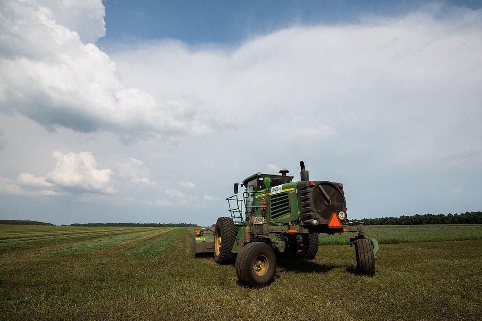 Цены на сельхозземли в России пока на порядок ниже, чем в Восточной Европе