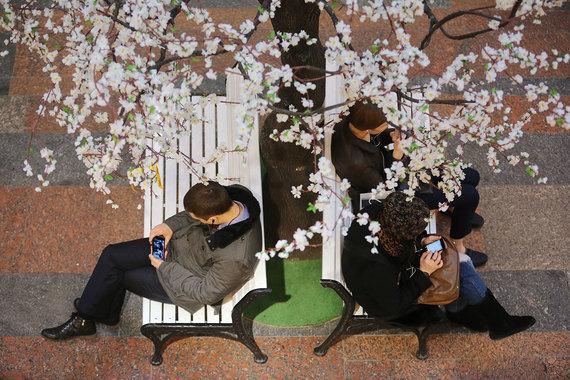 Мобильный интернет 4G в этом году переживет бум популярности, надеются операторы