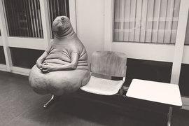 Скульптура голландской художницы Маргрит ван Брифорт в России гораздо более популярна, получила имя Ждун и стала интернет-мемом