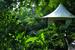 Four Seasons Tented Camp, ЧианграйПалаточный лагерь Four Seasons находится в сердце так называемого Золотого треугольника: на границе Бирмы, Лаоса и Таиланда