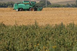 Семья члена правления «Лукойла» Кукуры может удвоить земельный банк