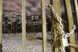 Бывшая земля фирмы «Цветы» стала собственностью Петербурга