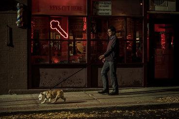 Поэт Патерсон и его четвероногий критик Марвин на ежевечерней прогулке до бара