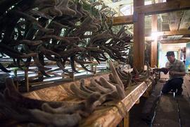 Если Алтай – аграрный край, то должна ли у него быть аграрная судьба и можно ли эту судьбу изменить