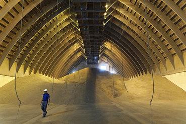 Египет и Турция – главные покупатели российской пшеницы