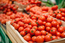 Турецкие помидоры так подешевели, что их страшно пускать на российский рынок