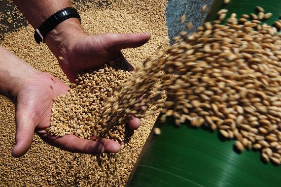 Минсельхоз определился с ценами на зерно для проведения интервенций в 2017/18 сельхозгоду