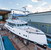 «Идея Dynamiq – создание smart yachts», – считает ее основатель Сергей Добросердов