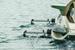Прочные и легкие алюминиевые «крылья» позволяют катамарану «взлетать» над водой при разгоне в 12 км/ч.
