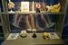 В интерактивном центре «Познай себя – познай мир» при Государственном Дарвиновском музее размещено более 50 интерактивных экспонатов