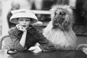Известнейшая модель 50-х Довима в Balenciaga и собака Саша в кафе Deux Magots, Париж, 1955 год