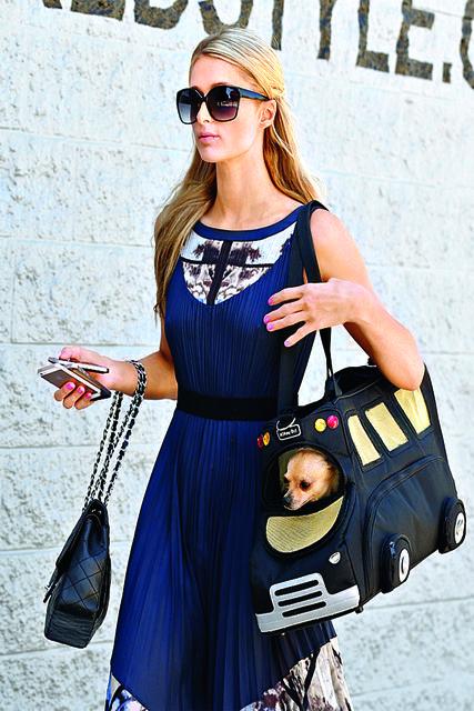 Актриса Пэрис Хилтон берет с собой собачку  в сумке-переноске